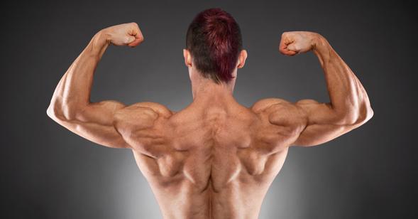 Muskelaufbau und Aminosaeuren